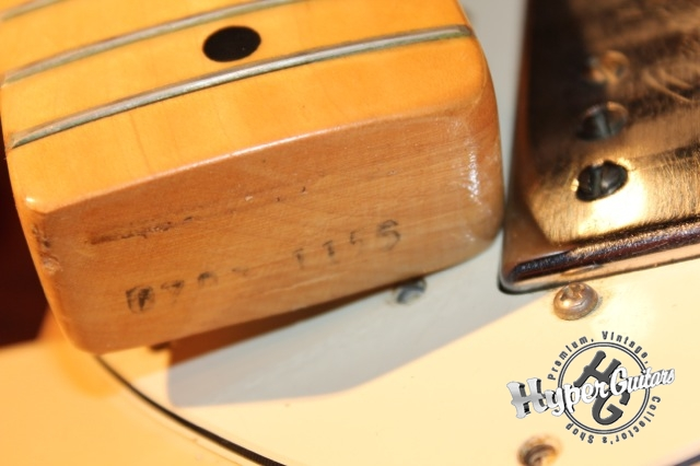 Fender '74 Telecaster Thinline
